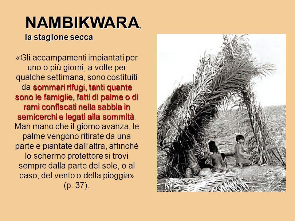 NAMBIKWARA, la stagione secca sommari rifugi, tanti quante sono le famiglie, fatti di palme o di rami confiscati nella sabbia in semicerchi e legati a