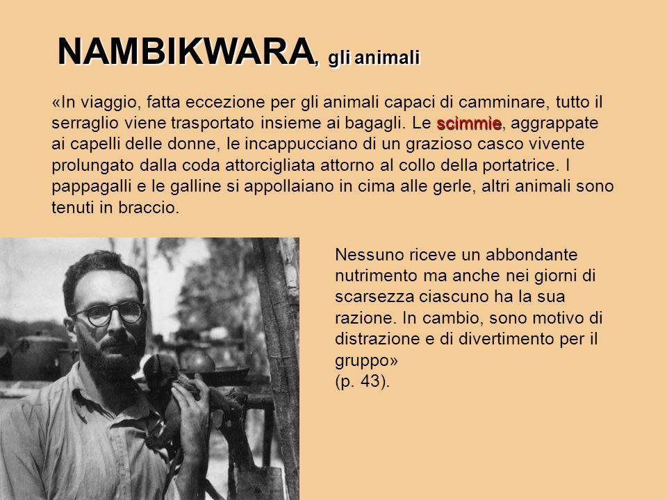 scimmie «In viaggio, fatta eccezione per gli animali capaci di camminare, tutto il serraglio viene trasportato insieme ai bagagli. Le scimmie, aggrapp