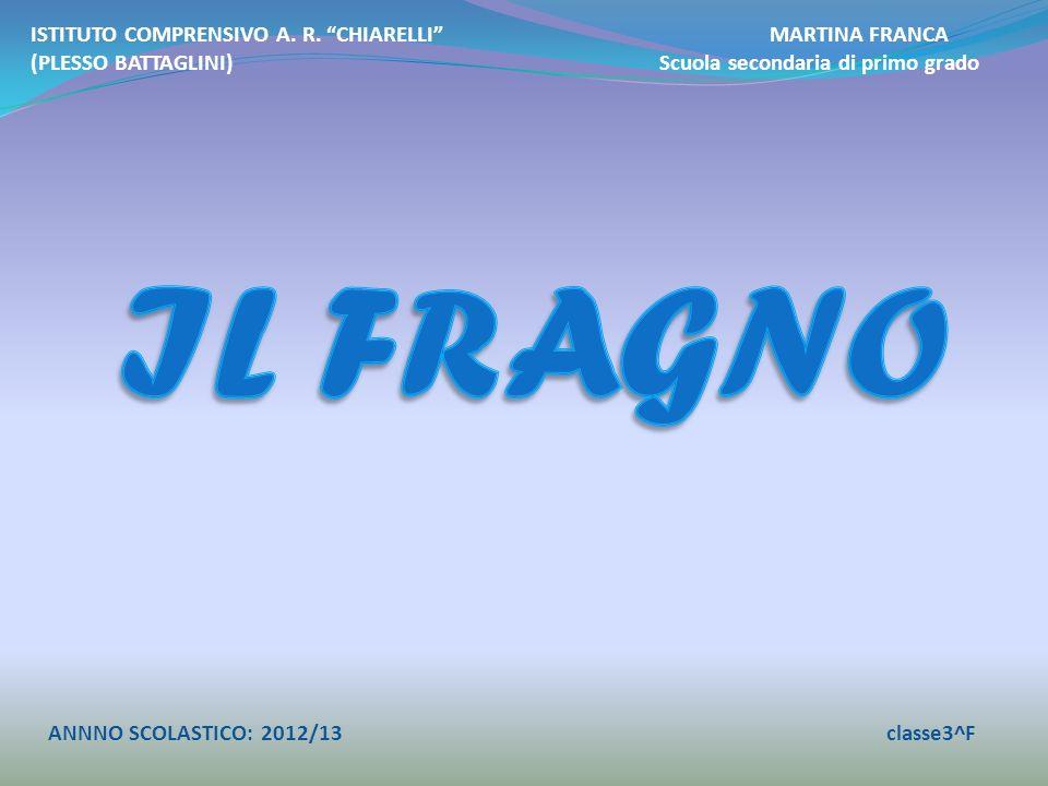 ISTITUTO COMPRENSIVO A. R. CHIARELLI MARTINA FRANCA (PLESSO BATTAGLINI) Scuola secondaria di primo grado ANNNO SCOLASTICO: 2012/13classe3^F