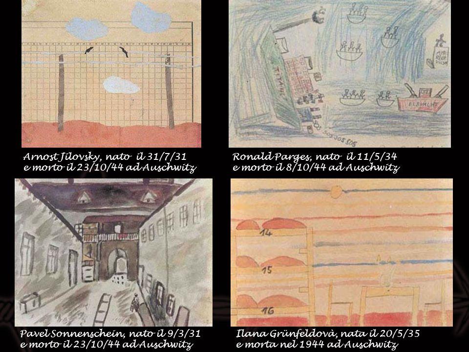 Arnost Jilovsky, nato il 31/7/31 e morto il 23/10/44 ad Auschwitz Pavel Sonnenschein, nato il 9/3/31 e morto il 23/10/44 ad Auschwitz Ilana Grünfeldov
