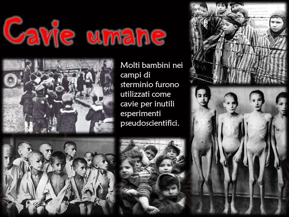 Molti bambini nei campi di sterminio furono utilizzati come cavie per inutili esperimenti pseudoscientifici.