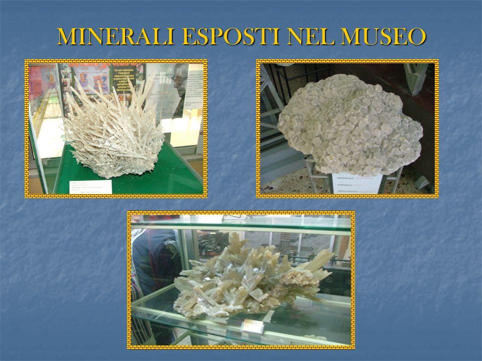 MINERALI ESPOSTI NEL MUSEO