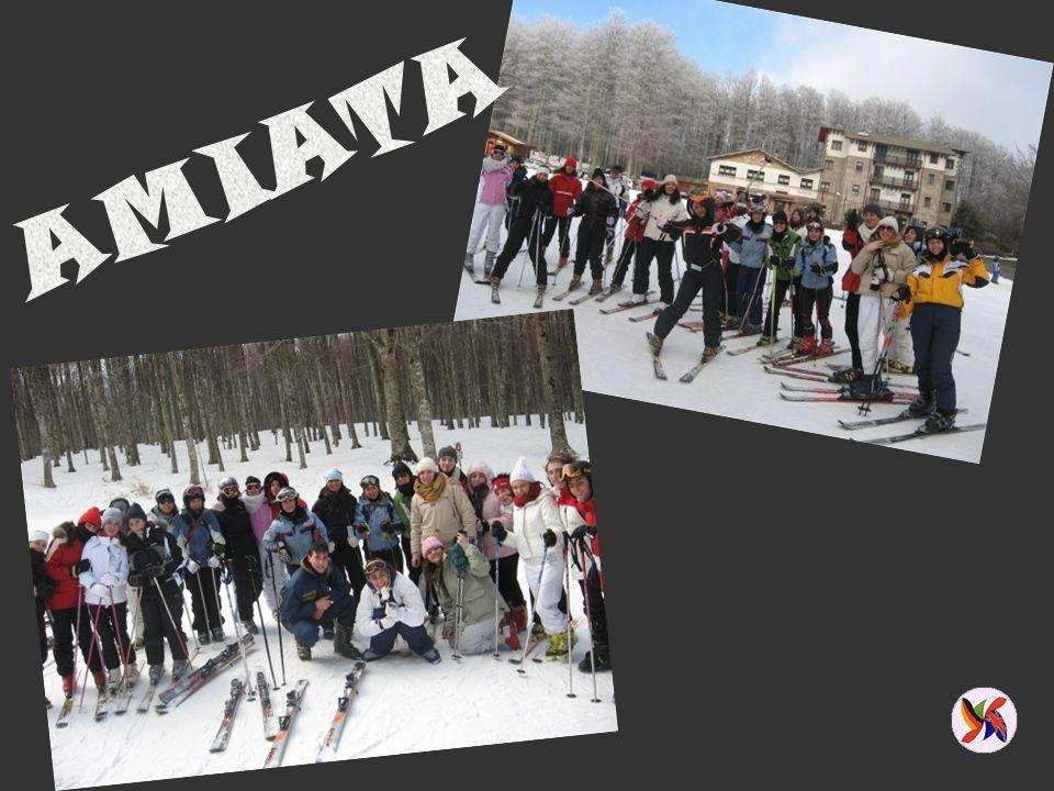 ATTIVITÀ SPORTIVE Giornata sulla neve Campionati studenteschi (nuoto, campestre, pallavolo, …) Gruppi sportivi INTEGRAZIONE E LEGALITÀ Progetto alunni stranieri Educazione alla legalità EDUCAZIONE ALLA SALUTE
