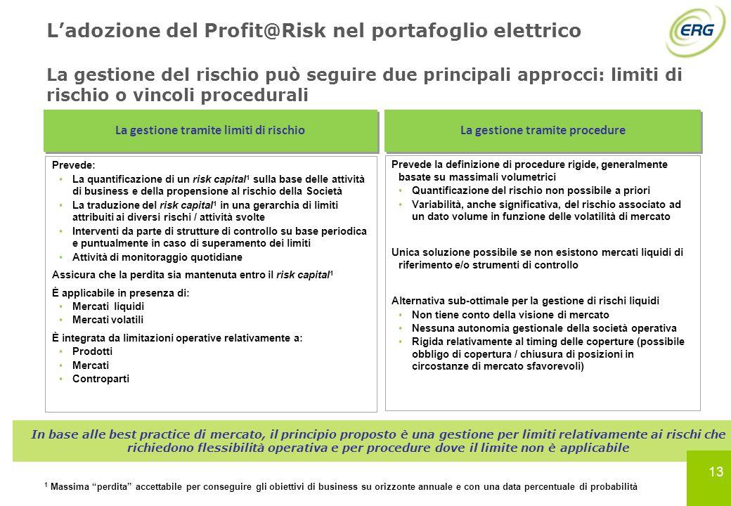 13 Ladozione del Profit@Risk nel portafoglio elettrico La gestione del rischio può seguire due principali approcci: limiti di rischio o vincoli proced