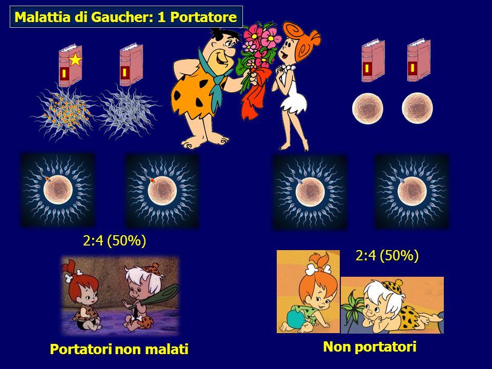 Portatori non malati 2:4 (50%) Non portatori 2:4 (50%) Malattia di Gaucher: 1 Portatore I I I I
