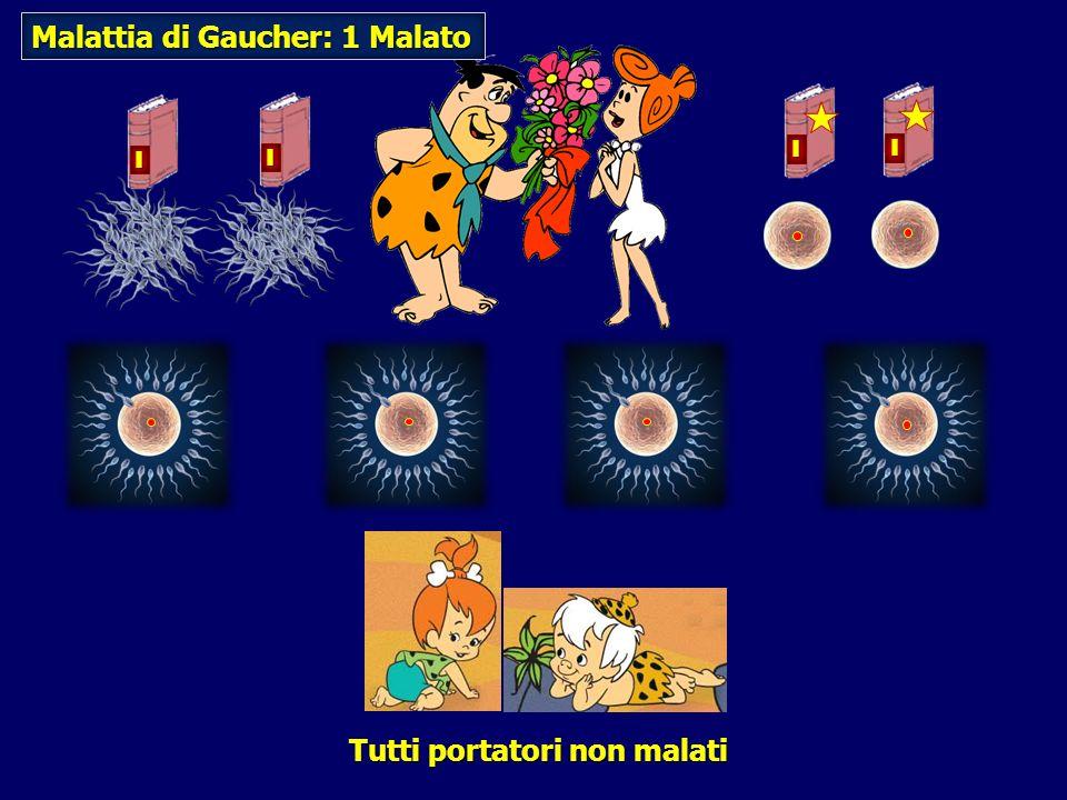 Malattia di Gaucher: 1 Malato Tutti portatori non malati I I I I