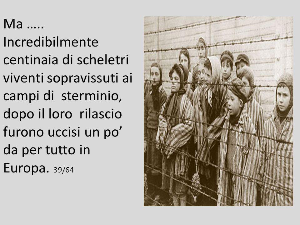 La stessa Svizzera agì come banca di Hitler, accettando di custodire miliardi di dollari ed oro sottratti alle vittime ebree. 38/64
