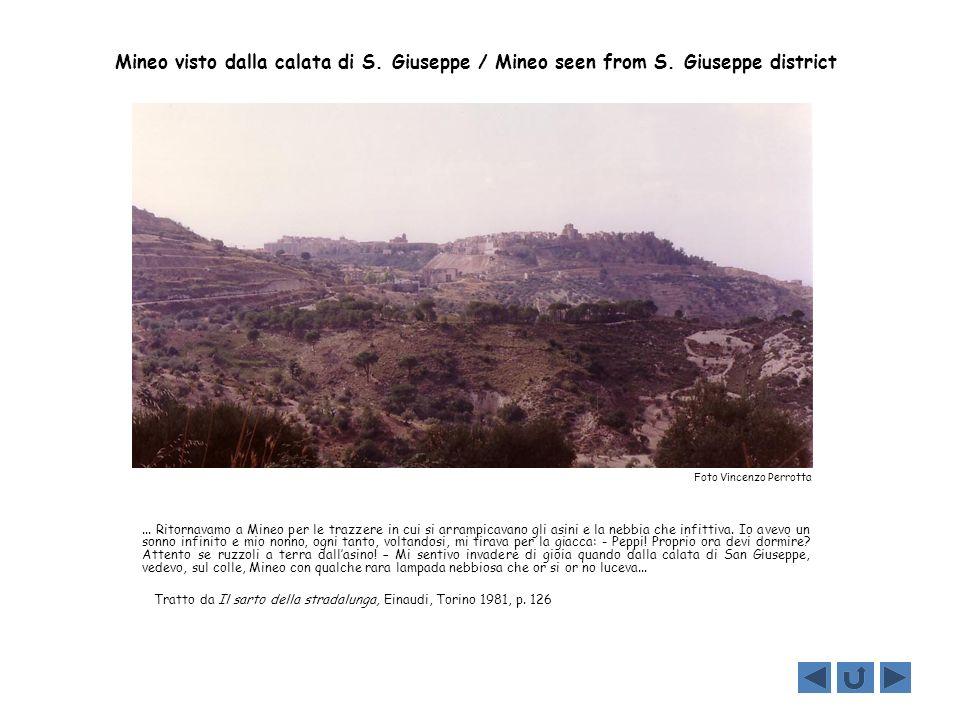 Mineo visto dalla calata di S. Giuseppe / Mineo seen from S. Giuseppe district... Ritornavamo a Mineo per le trazzere in cui si arrampicavano gli asin
