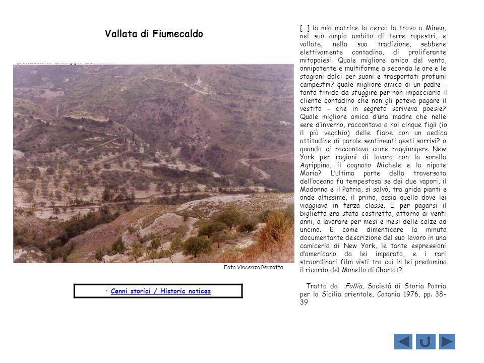 Cenni storici / Historic notices […] la mia matrice la cerco la trovo a Mineo, nel suo ampio ambito di terre rupestri, e vallate, nella sua tradizione