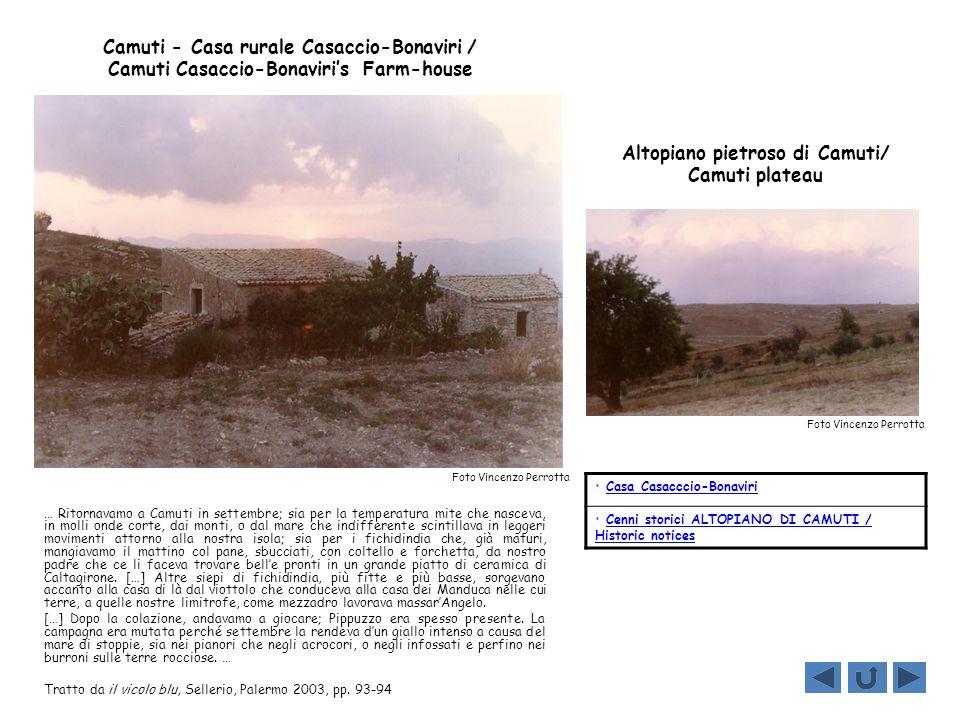 Altopiano pietroso di Camuti/ Camuti plateau Foto Vincenzo Perrotta … Ritornavamo a Camuti in settembre; sia per la temperatura mite che nasceva, in m