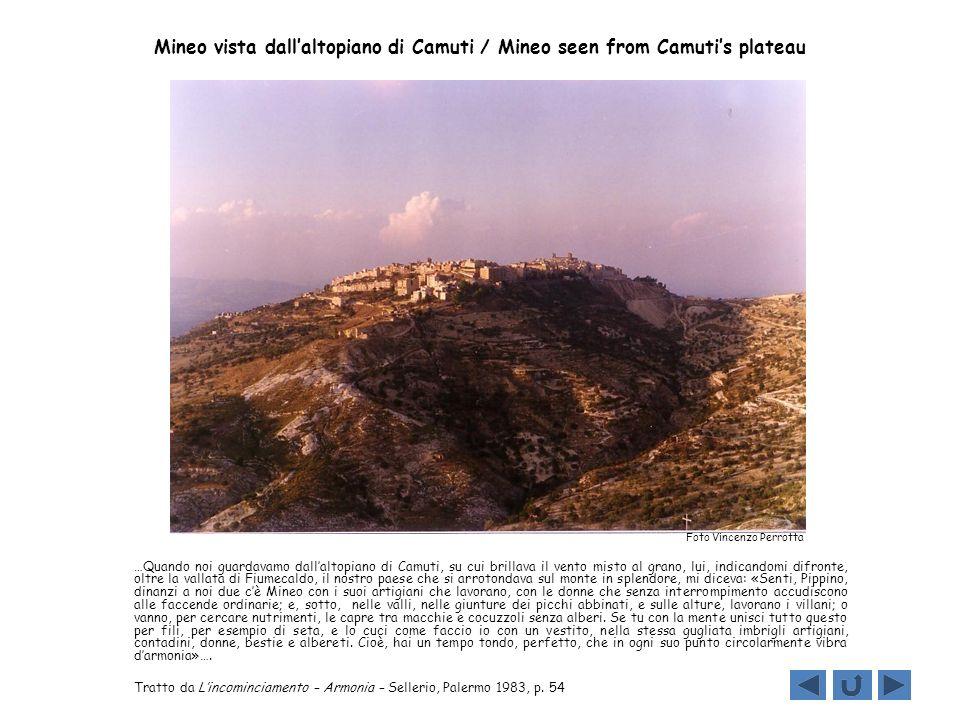 Mineo vista dallaltopiano di Camuti / Mineo seen from Camutis plateau …Quando noi guardavamo dallaltopiano di Camuti, su cui brillava il vento misto a