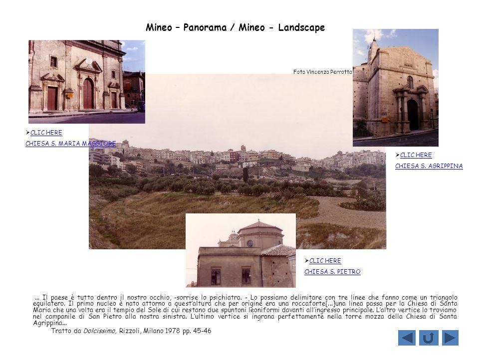 Mineo – Panorama / Mineo - Landscape... Il paese è tutto dentro il nostro occhio, -sorrise lo psichiatra. - Lo possiamo delimitare con tre linee che f