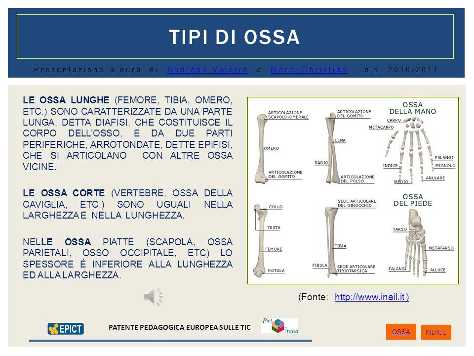 TIPI DI OSSA (MAPPA) MAPPA CONCETTUALE (FONTE: http://cmapspubblic.ihmc.us http://cmapspubblic.ihmc.us INDICE PATENTE PEDAGOGICA EUROPEA SULLE TIC OSSA Presentazione a cura di Sparano Valeria e Merci Christian a.s.