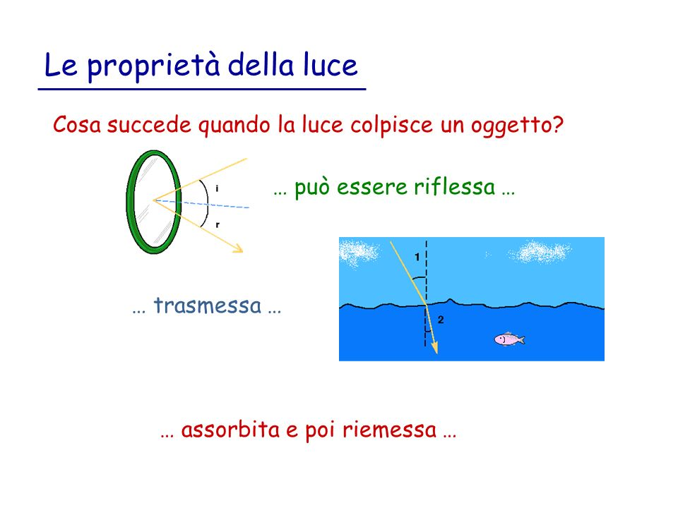 Le proprietà della luce Cosa succede quando la luce colpisce un oggetto.