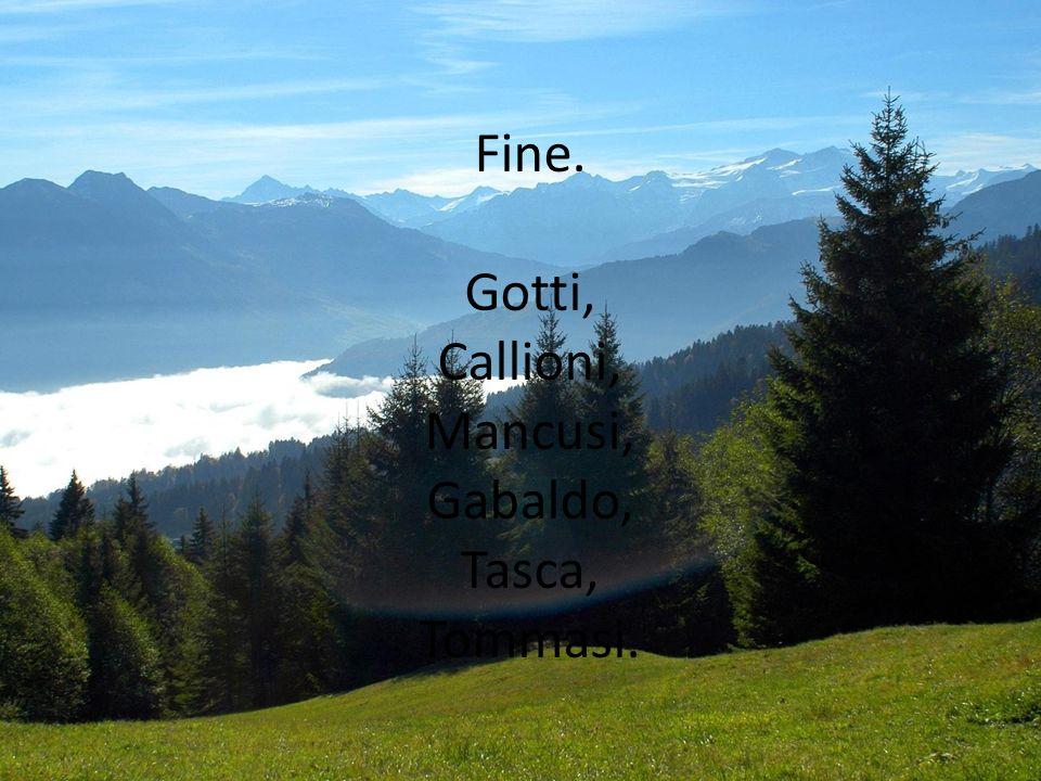 Fine. Gotti, Callioni, Mancusi, Gabaldo, Tasca, Tommasi.