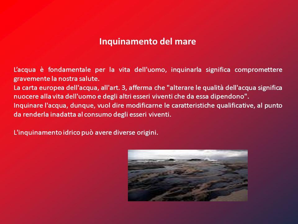 Inquinamento del mare Lacqua è fondamentale per la vita dell uomo, inquinarla significa compromettere gravemente la nostra salute.