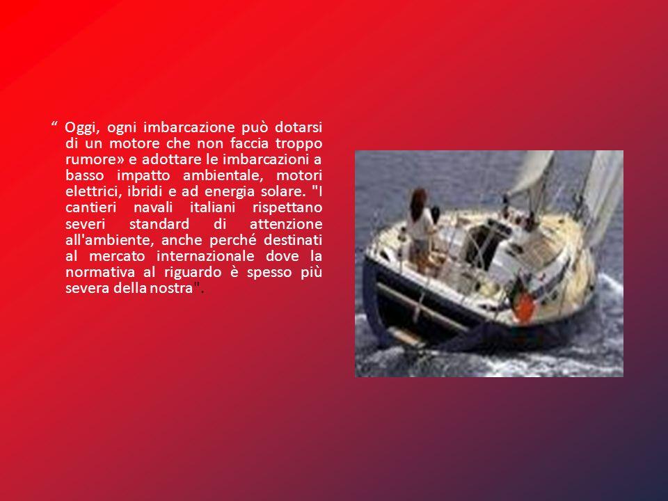 Oggi, ogni imbarcazione può dotarsi di un motore che non faccia troppo rumore» e adottare le imbarcazioni a basso impatto ambientale, motori elettrici, ibridi e ad energia solare.