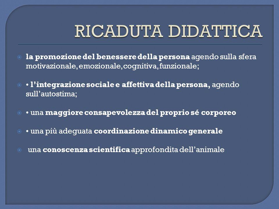la promozione del benessere della persona agendo sulla sfera motivazionale, emozionale, cognitiva, funzionale; lintegrazione sociale e affettiva della