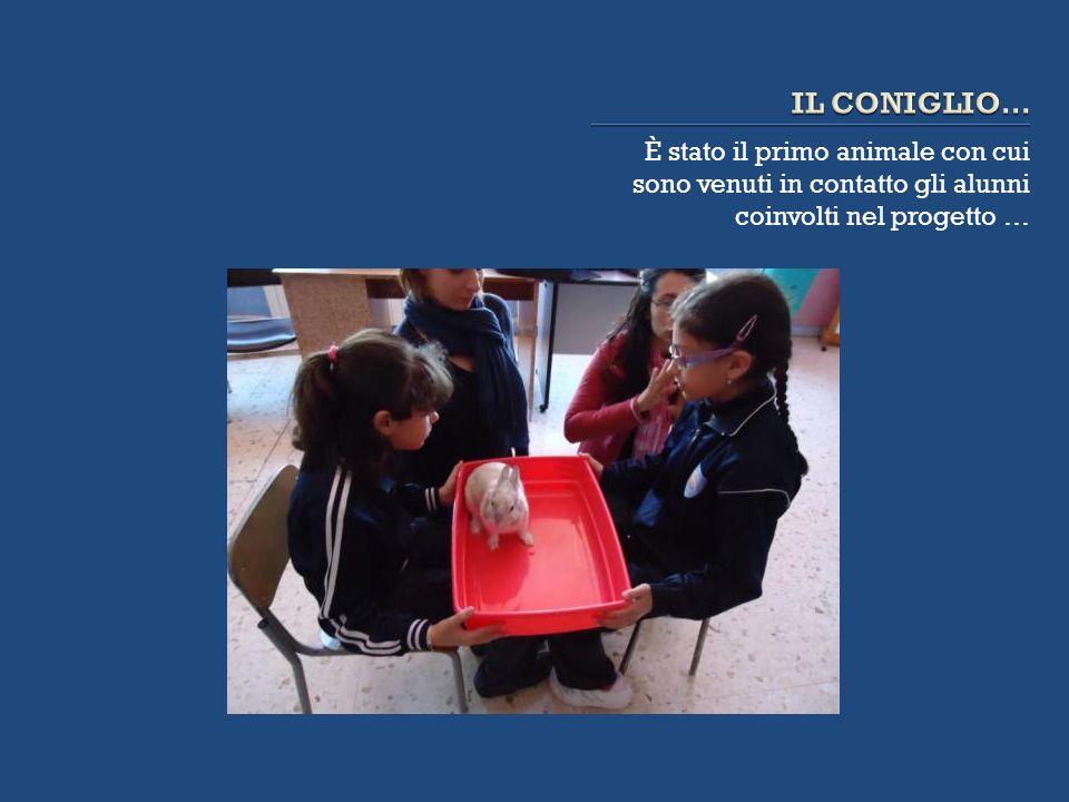 È stato il primo animale con cui sono venuti in contatto gli alunni coinvolti nel progetto …