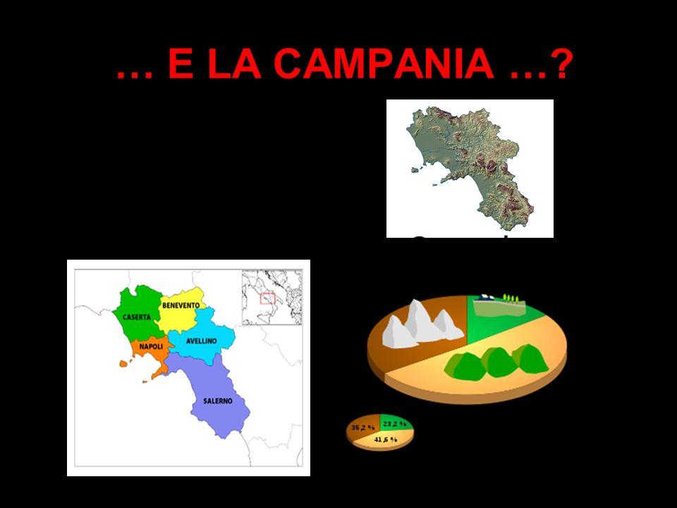 PROVINCE: ENTI ARTIFICIALI? La storia della penisola italiana è fatta di localismi più che di regionalismi. E una storia di una continua, frammentata,