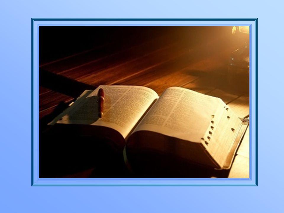 N essuna paura, nessuno rifiuto viene a turbare l opera della grazia, il suo cuore è riempito di ineffabile attesa, Lei offre a Dio il silenzio dove abita la Parola.