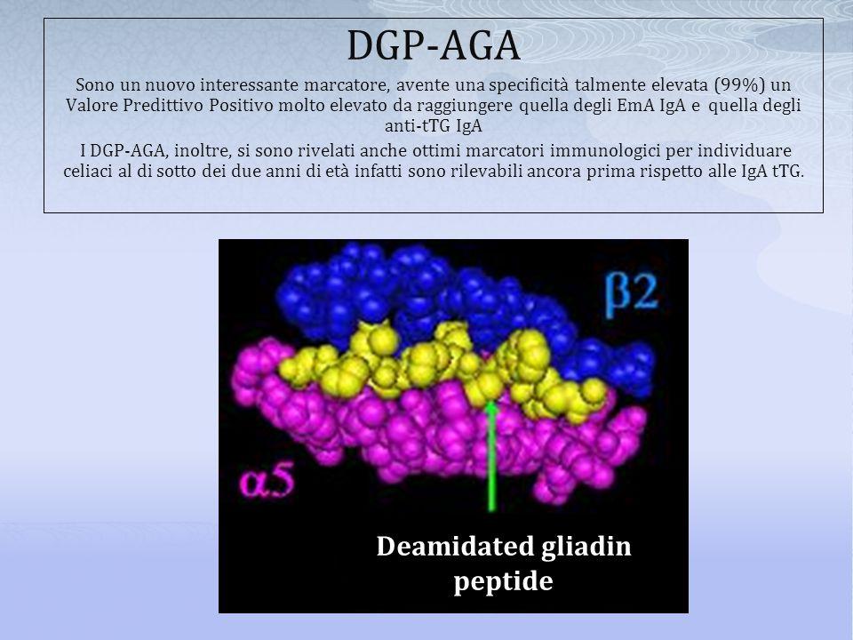 DGP-AGA Sono un nuovo interessante marcatore, avente una specificità talmente elevata (99%) un Valore Predittivo Positivo molto elevato da raggiungere