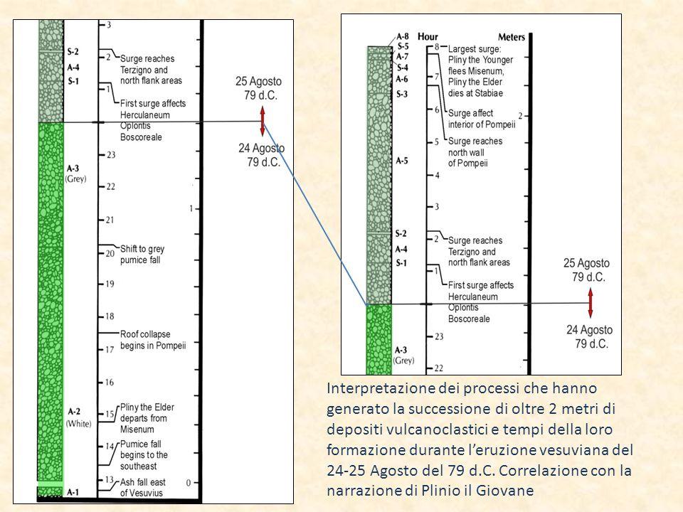 Interpretazione dei processi che hanno generato la successione di oltre 2 metri di depositi vulcanoclastici e tempi della loro formazione durante leruzione vesuviana del 24-25 Agosto del 79 d.C.