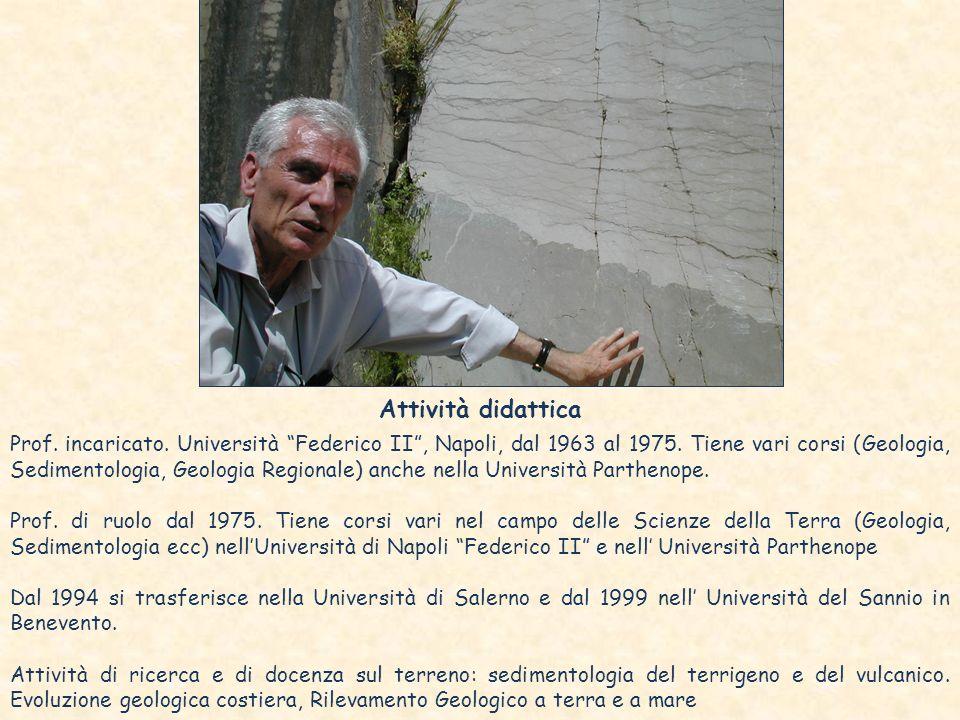 Attività didattica Prof. incaricato. Università Federico II, Napoli, dal 1963 al 1975. Tiene vari corsi (Geologia, Sedimentologia, Geologia Regionale)