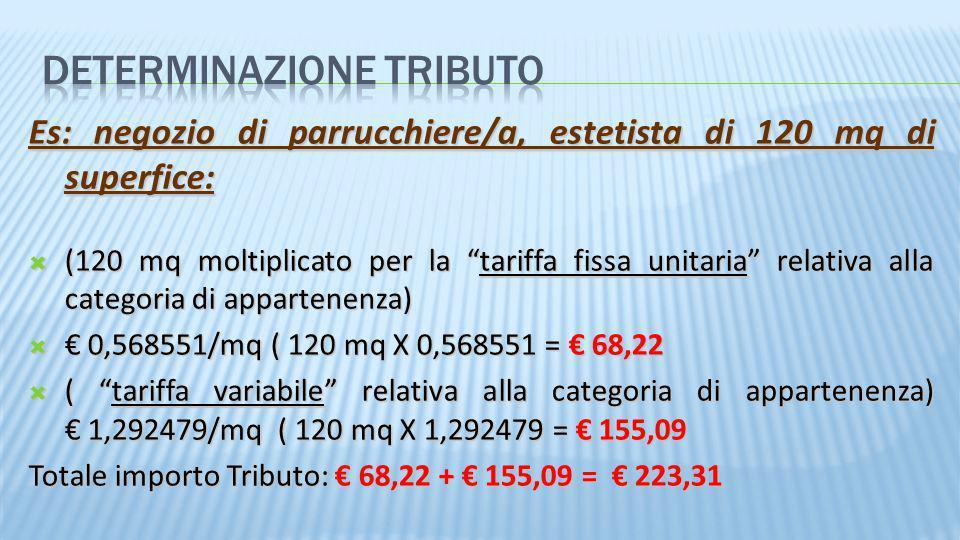 Es: negozio di parrucchiere/a, estetista di 120 mq di superfice: (120 mq moltiplicato per la tariffa fissa unitaria relativa alla categoria di apparte