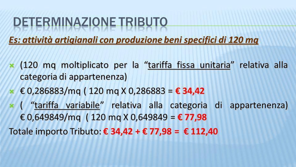 Es: attività artigianali con produzione beni specifici di 120 mq (120 mq moltiplicato per la tariffa fissa unitaria relativa alla categoria di apparte