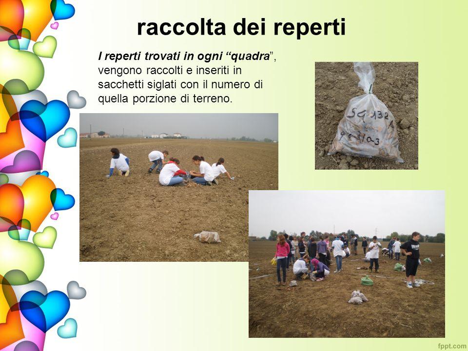 raccolta dei reperti I reperti trovati in ogni quadra, vengono raccolti e inseriti in sacchetti siglati con il numero di quella porzione di terreno.