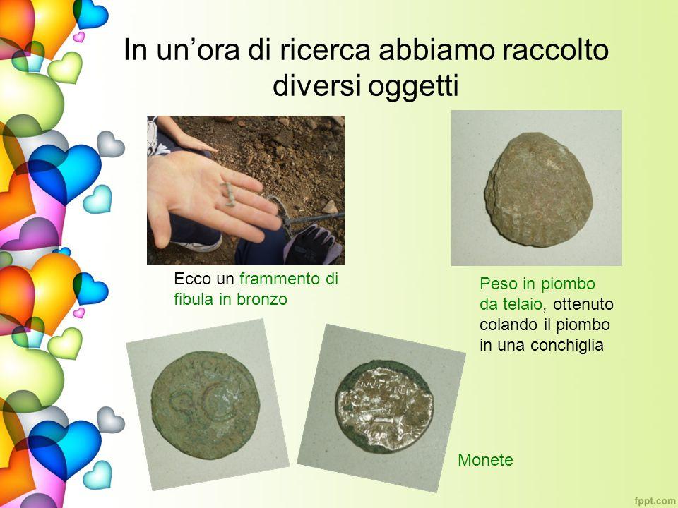 In unora di ricerca abbiamo raccolto diversi oggetti Ecco un frammento di fibula in bronzo Peso in piombo da telaio, ottenuto colando il piombo in una