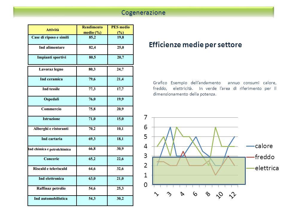 Efficienze medie per settore Cogenerazione Grafico Esempio dellandamento annuo consumi calore, freddo, elettricità. In verde larea di riferimento per