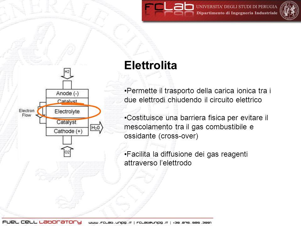 Elettrodo poroso Costituisce la superficie attiva dove avviene la reazione elettrochimica Permette la conduzione degli ioni formati nella reazione elettrochimica Costituisce una barriera fisica tra il gas e lelettrolita Classification