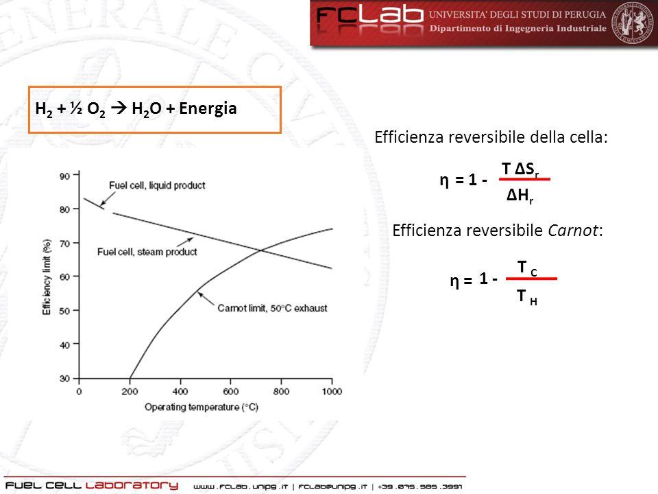 ΔH r = ΔG r + T ΔS r ΔG r = nFE rev n: numero di elettroni che partecipano alla reazione F: costante di Faraday E rev : tensione reversibile di cella Per H 2 e O 2 a 25°C: E rev = ΔGrΔGr nF = 1.23 V E rev = E 0 + RT nF ln P reag P prod Tensione ideale di cella: P reag : pressione dei reagenti P prod : pressione dei prodotti