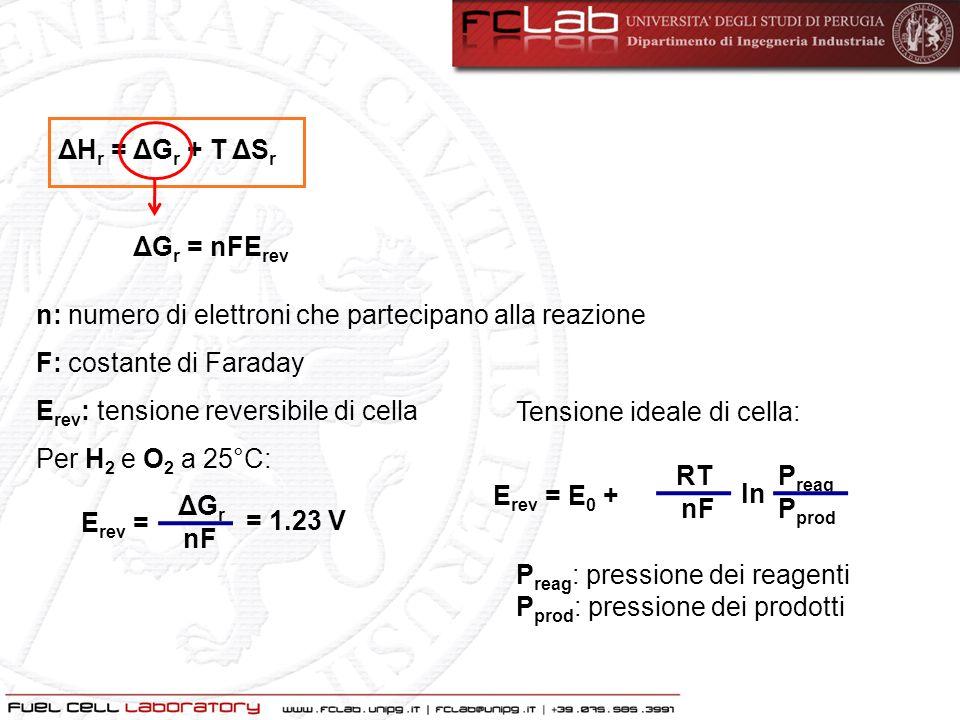 Il comportamento ideale di una FC è regolato dalla legge di Nerst La legge di Nerst lega la ddp E 0 in condizioni standard con il potenziale di equilibrio E alle differenti temperature e pressioni dei gas reagenti E rev = E 0 + RT nF ln P reag P prod