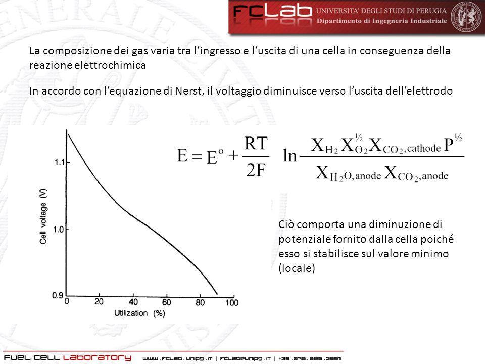 La composizione dei gas varia tra lingresso e luscita di una cella in conseguenza della reazione elettrochimica In accordo con lequazione di Nerst, il