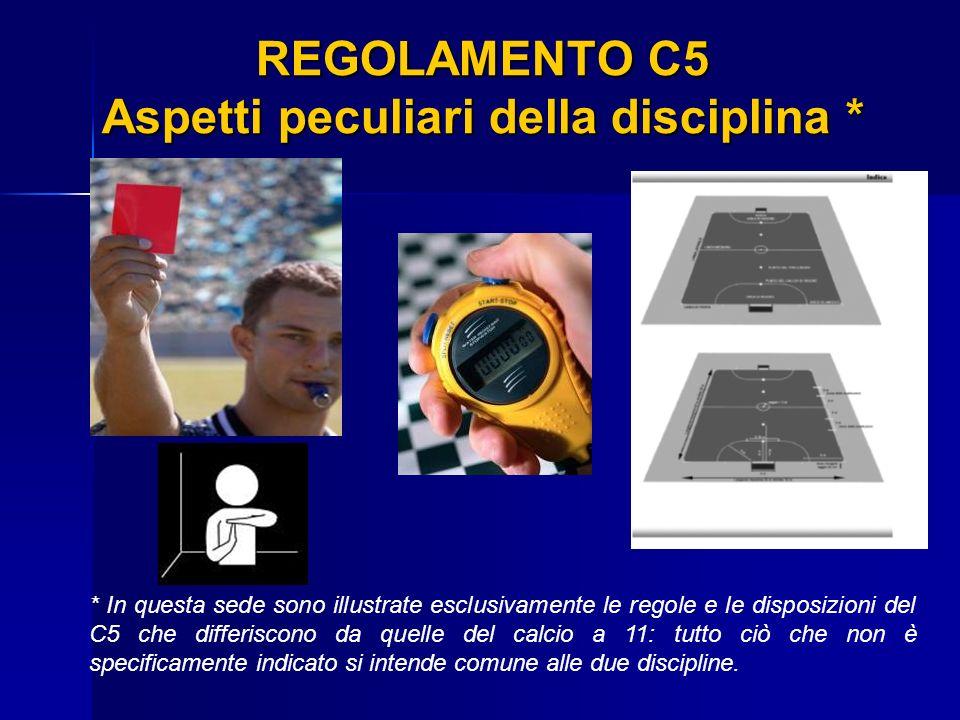 REGOLAMENTO C5 Aspetti peculiari della disciplina * REGOLAMENTO C5 Aspetti peculiari della disciplina * * In questa sede sono illustrate esclusivament