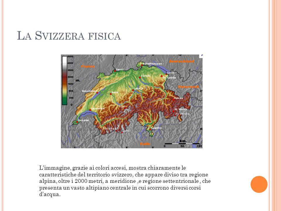 L A S VIZZERA FISICA Limmagine, grazie ai colori accesi, mostra chiaramente le caratteristiche del territorio svizzero, che appare diviso tra regione