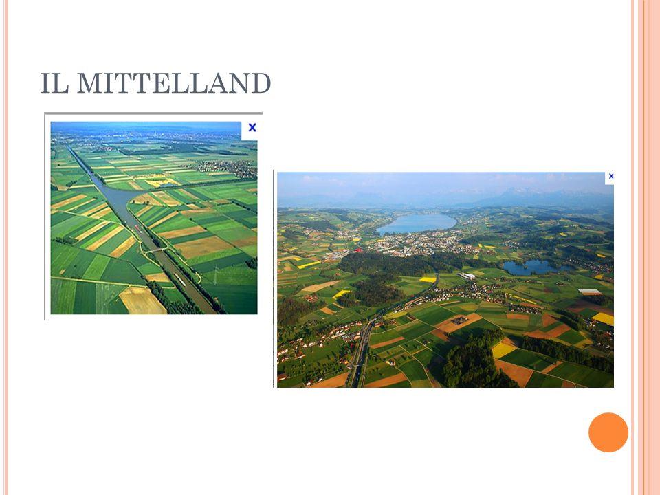 IL MITTELLAND