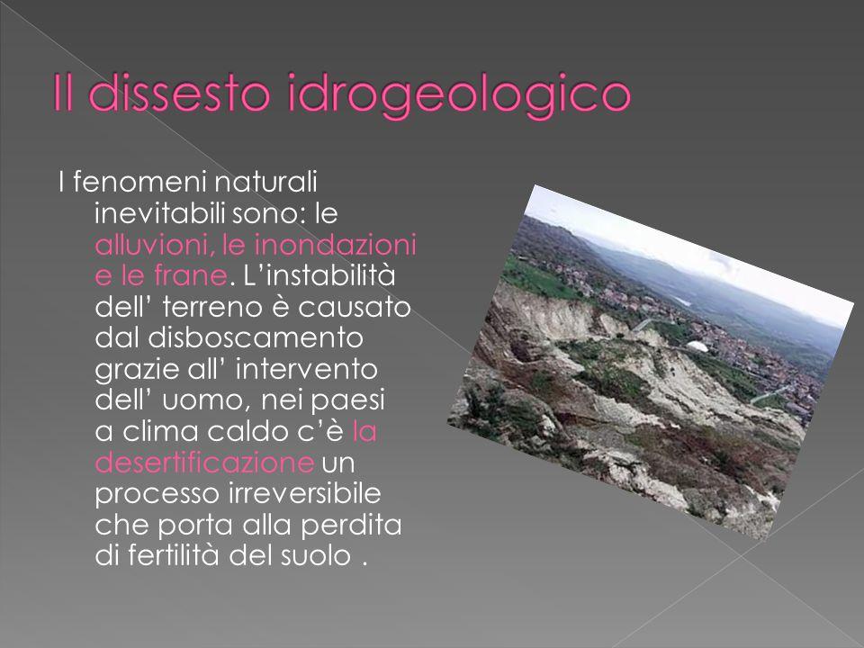 I fenomeni naturali inevitabili sono: le alluvioni, le inondazioni e le frane. Linstabilità dell terreno è causato dal disboscamento grazie all interv