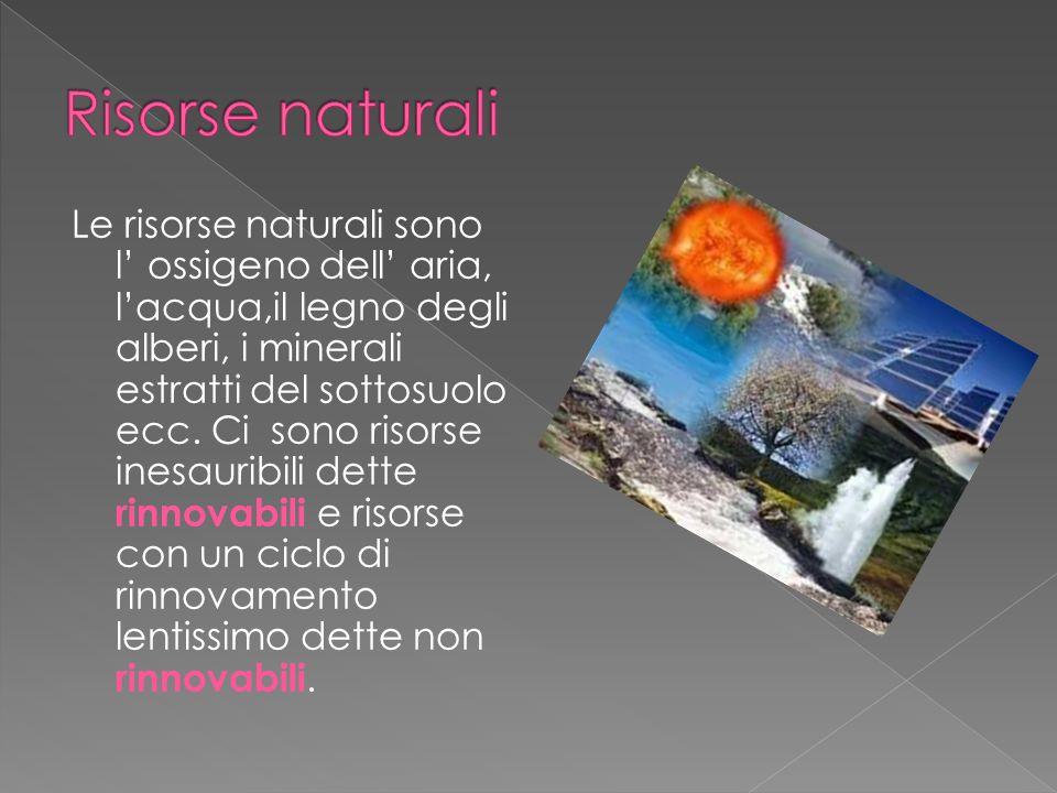 Le risorse naturali sono l ossigeno dell aria, lacqua,il legno degli alberi, i minerali estratti del sottosuolo ecc. Ci sono risorse inesauribili dett