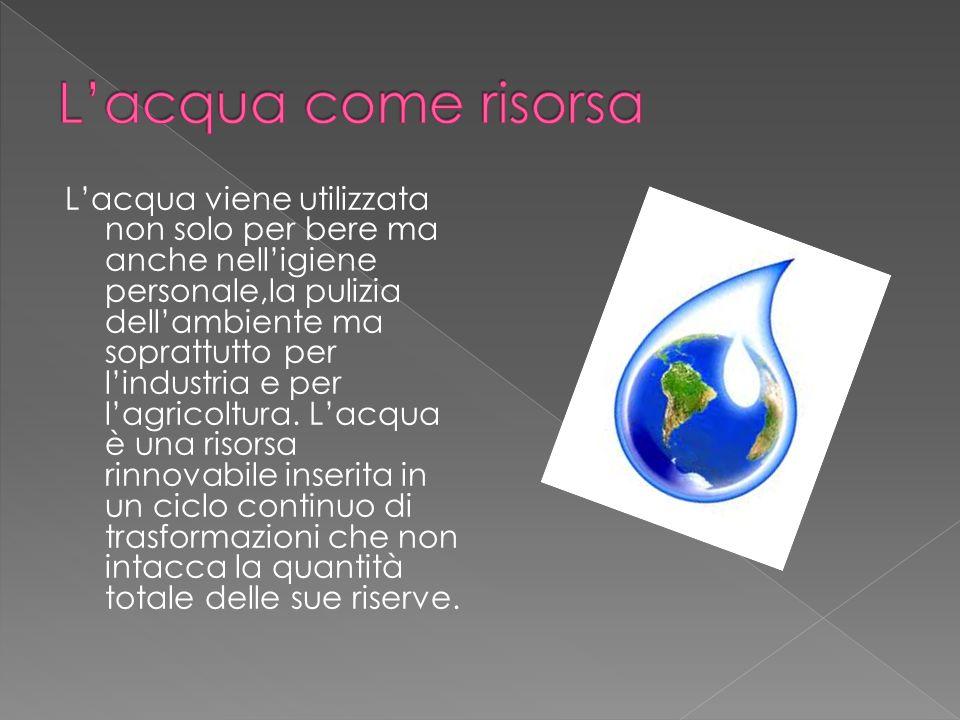Lacqua viene utilizzata non solo per bere ma anche nelligiene personale,la pulizia dellambiente ma soprattutto per lindustria e per lagricoltura. Lacq