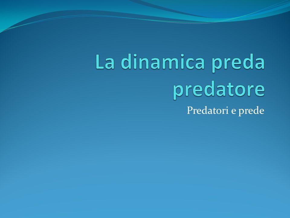 Predatori e Prede. I predatori ricavano il proprio nutrimento da altri esseri viventi.