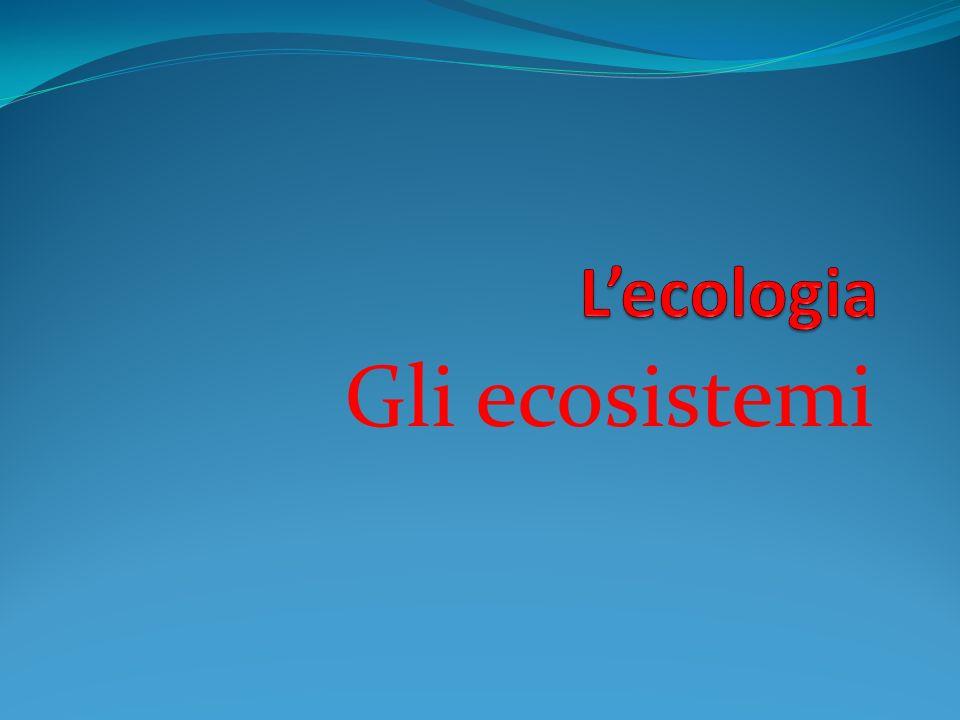Lecologia è la scienza che studia gli ecosistemi.