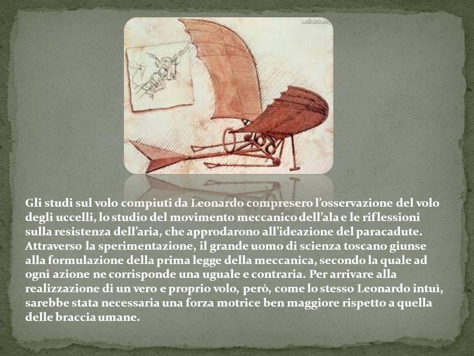 Gli studi sul volo compiuti da Leonardo compresero losservazione del volo degli uccelli, lo studio del movimento meccanico dellala e le riflessioni su