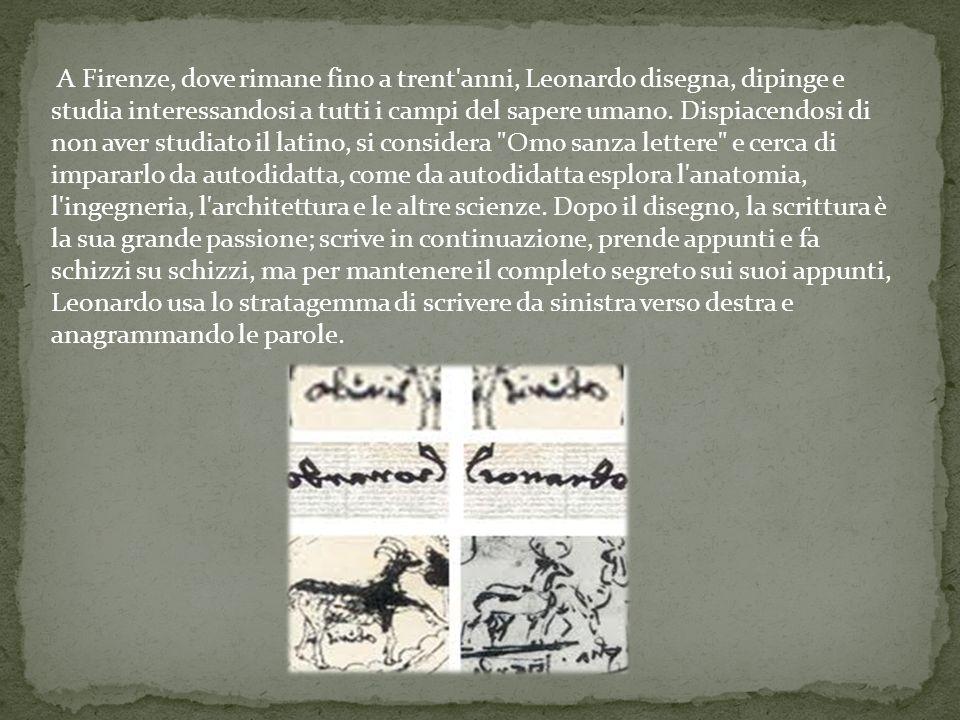 A Firenze, dove rimane fino a trent'anni, Leonardo disegna, dipinge e studia interessandosi a tutti i campi del sapere umano. Dispiacendosi di non ave