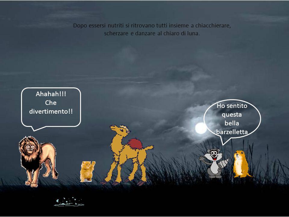Dopo essersi nutriti si ritrovano tutti insieme a chiacchierare, scherzare e danzare al chiaro di luna. Ahahah!!! Che divertimento!! Ho sentito questa