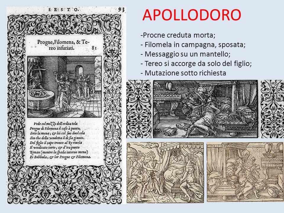 APOLLODORO -Procne creduta morta; - Filomela in campagna, sposata; - Messaggio su un mantello; - Tereo si accorge da solo del figlio; - Mutazione sotto richiesta