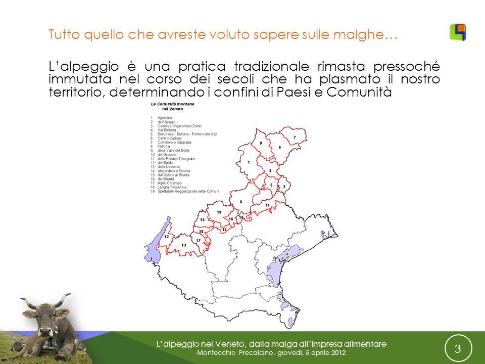 3 Lalpeggio nel Veneto, dalla malga allimpresa alimentare Montecchio Precalcino, giovedì, 5 aprile 2012 Tutto quello che avreste voluto sapere sulle m